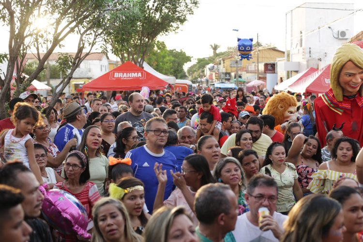 Blocos animaram o domingo de carnaval em Teresina. Foto: PMT