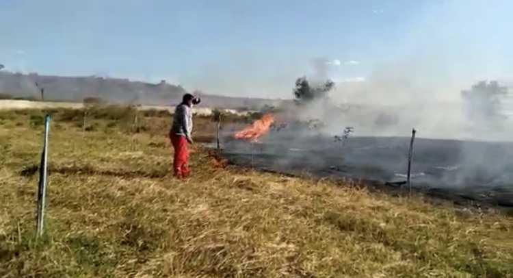 O fogo atingiu os espaços usados pelo curso de agronomia. Foto: Reprodução